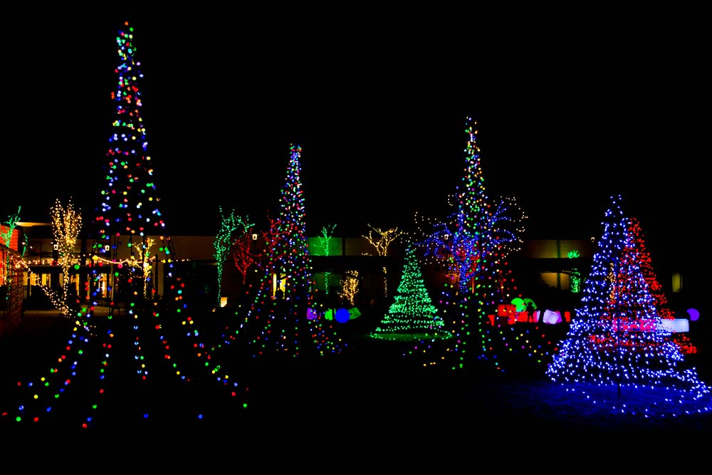 5 Must-See Holiday Lights Tours in the San Diego Area